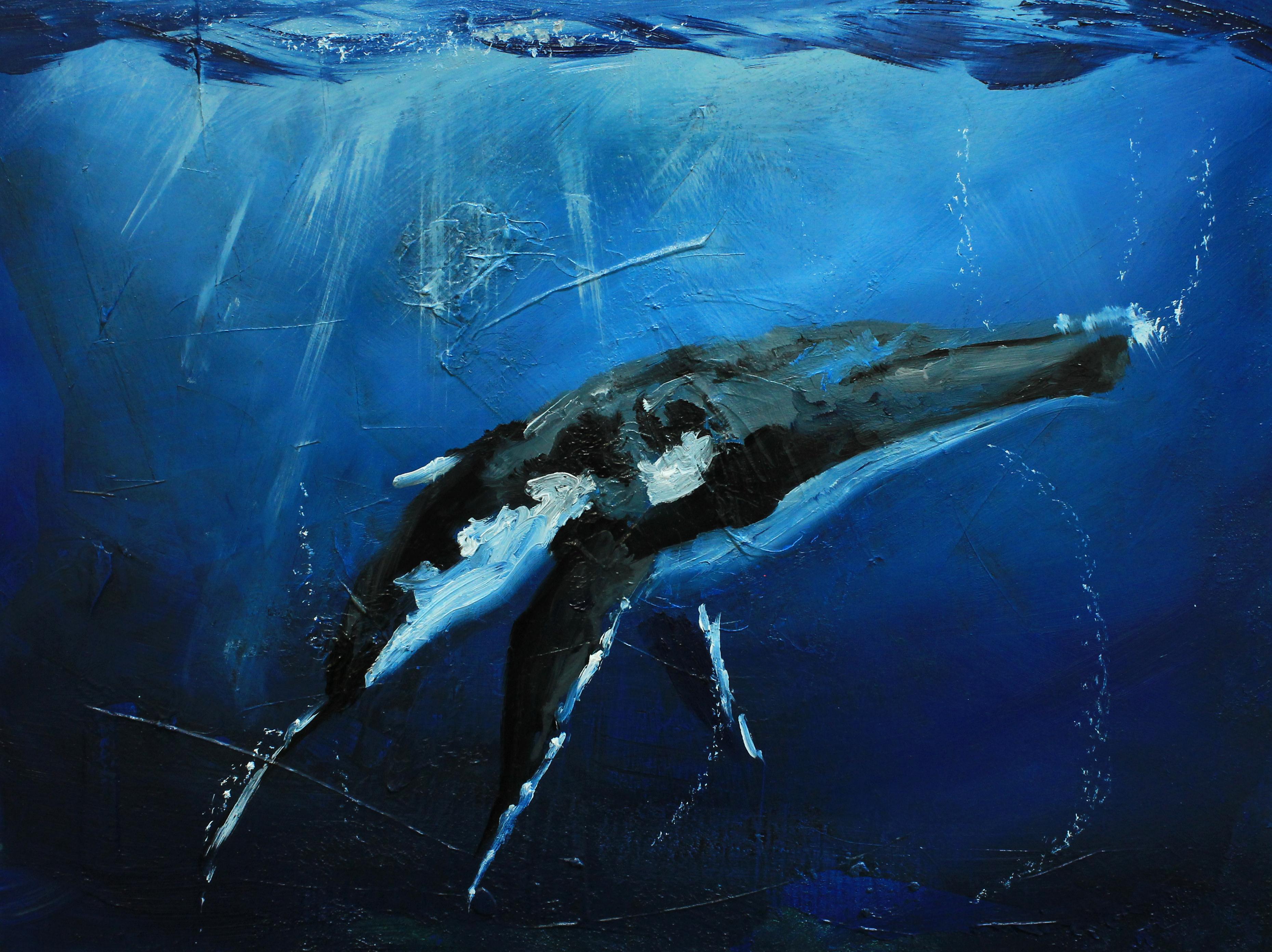 ballena azul - photo #19